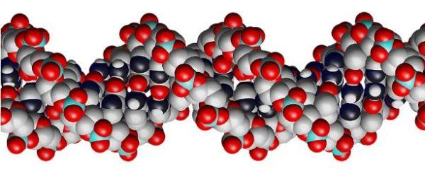 DNR_molekule