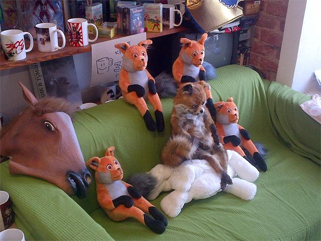 Stoned Fox6