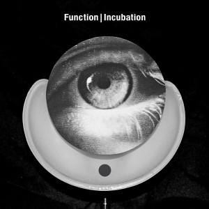 03_Function_-_Incubation