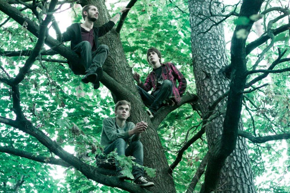 Pyro_Trees
