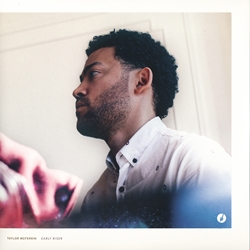 17_Taylor_McFerrin_-_The_Antidote