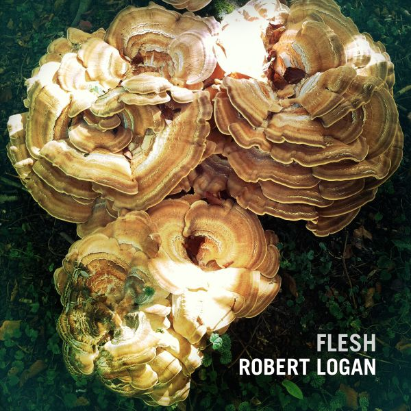 Robert_Logan_-_Flesh