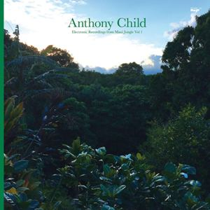 Anthony_Child_-_Electronic_Recordings_From_Maui_Jungle_Vol1