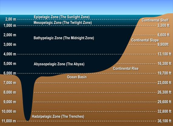 ocean-layers-diagram