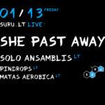 Gotikinio roko pažiba She Past Away iš Turkijos koncertinį turą pradės Vilniuje